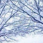 雪の種類と名前を一覧で紹介!降り方や積もり方でこんなに変わる!