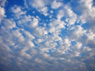 雲 種類 高積雲