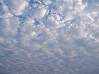 雲 種類 層積雲