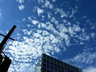 雲 種類 巻積雲