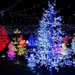 福岡クリスマスデートスポット ディナーやホテルおすすめは?