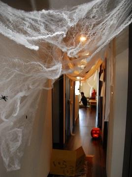 蜘蛛の巣 100均 綿