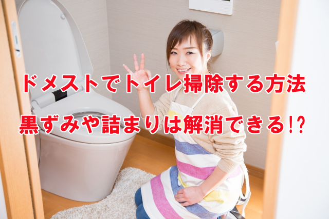 ドメストでトイレ掃除する方法